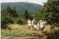 Thüringerwald_1